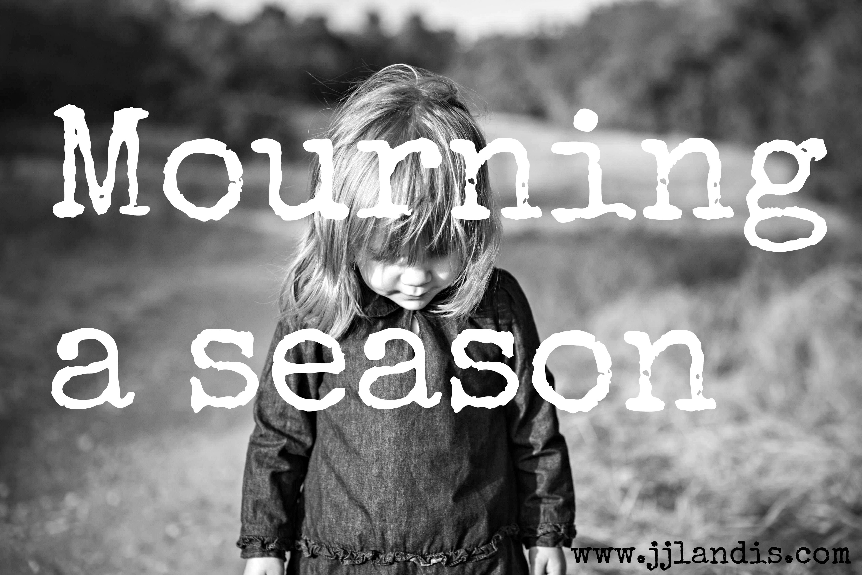 playground visit and changing seasons